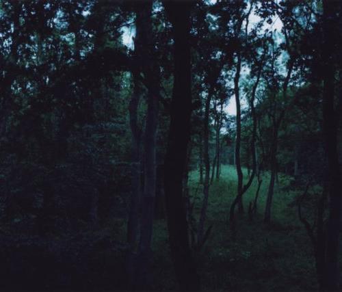 Chrystel Lebas_iz serije Čekanje_2008, Tražeći mjesto za zaborav, 2008