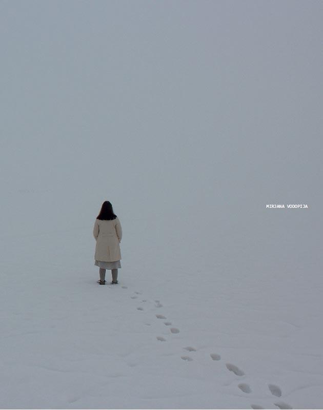 Katalog: Mirjana Vodopija: Nepovratno